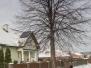 Wycinka, cięcia pielęgnacyjne drzew